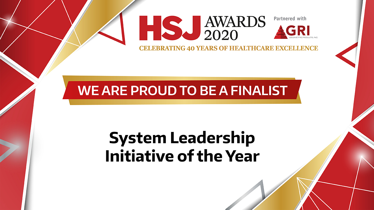 system leadership initiative of the year